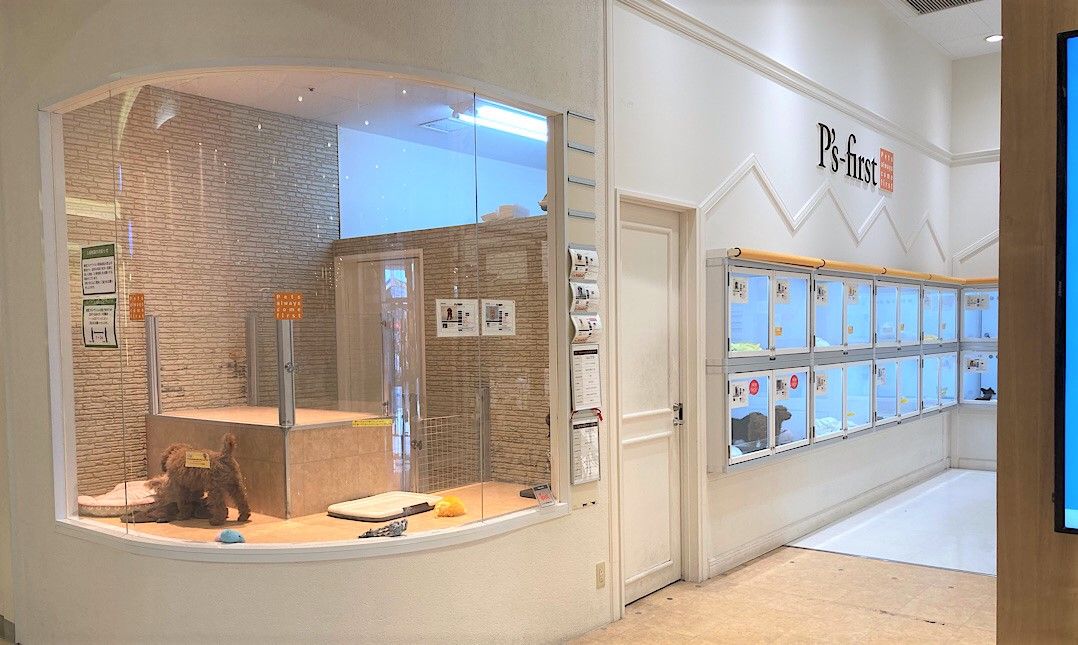 P's-first おゆみ野店(千葉県)